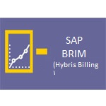 SAP Hybris Billing Online Access