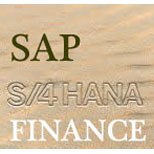 SAP S4HANA Finance Online Access
