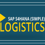 SAP S4HANA Logistics Online Access
