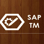 SAP TM Online Access